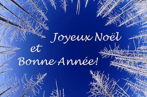 Joyeux No  235 l et Bonne Ann  233 e   224  vous tous  On se relit le 2 janvier    Joyeux Noel Et Bonne Annee