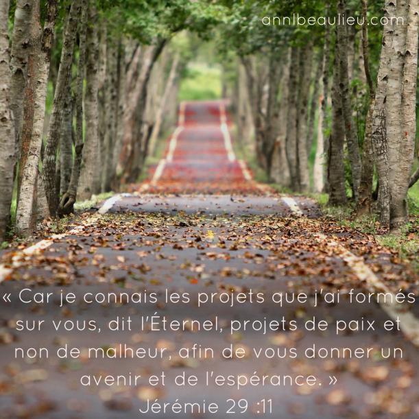 « Car je connais les projets que j'ai formés sur vous, dit l'Éternel, projets de paix et non de malheur, afin de vous donner un avenir et de l'espérance. » Jérémie 29 -11